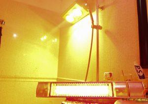 đèn sưởi 2 bóng